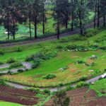 Best places to visit in Ooty in 3 days | Bangalore To Ooty trip
