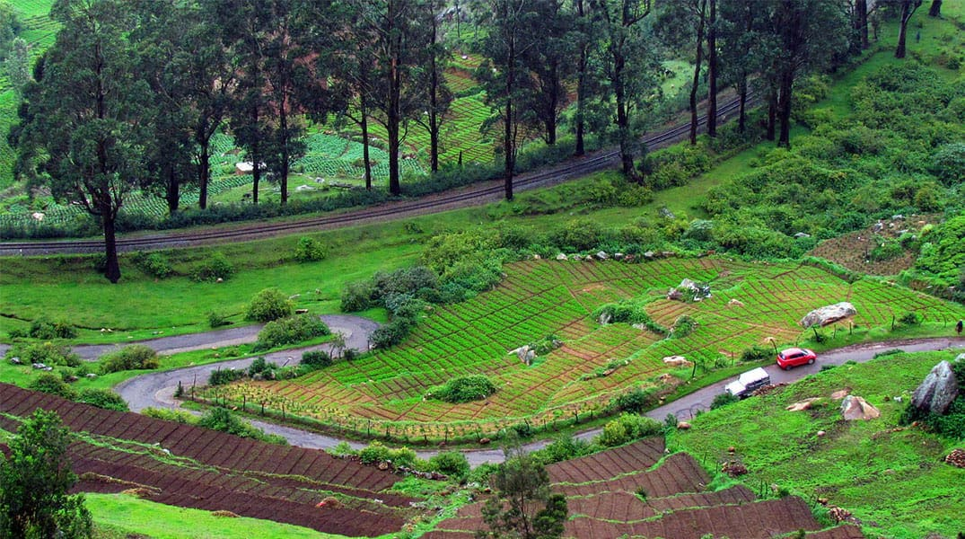 Best places to visit in Ooty in 3 days   Bangalore To Ooty trip